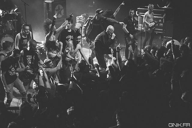 Les Sales majest�s en concert en 2014 avant un nouvel album
